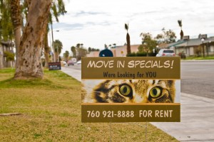 We Are Looking for You to Move In
