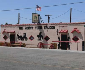 The New Horny Toad Saloon
